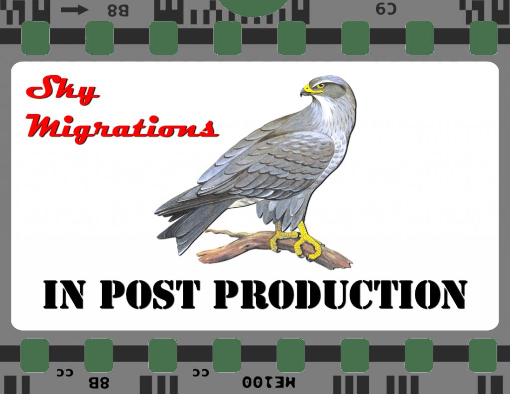Raptors-Post-Production2