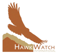 HawkWatch International